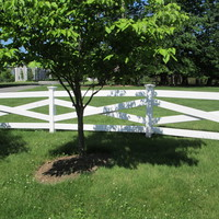 Cedor Lexington fence